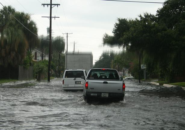 High Tide on Cleveland Street in Tampa.JPG