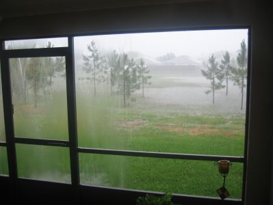 HurricaneAlberto61306BackyardDeluge.jpg