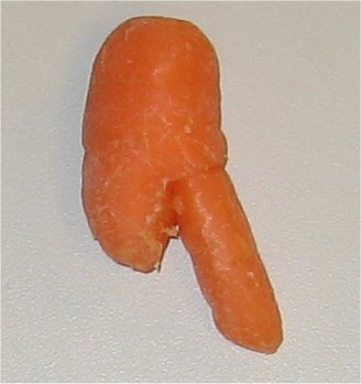 MitchCarrotPenis7.jpg
