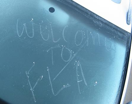 WelcomeToFloridaIceOnMyWindshield.JPG